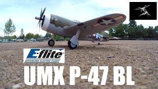 e flite umx p 47 bl review and flight