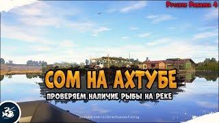 Ловим сома на реке Рыбалка на реке Ахтуба Driler Русская Рыбалка 4