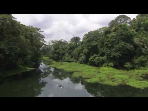 The Beautiful Nature Surrounding the Panama Canal