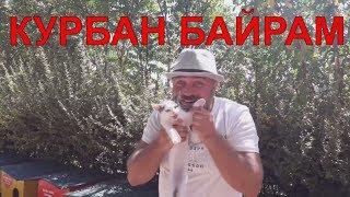 Курбан Байрам в Турции. Что это такое? Что происходит в Анталии в праздник? №80 #NazarDavydov(, 2017-09-06T13:43:23.000Z)