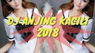 Best Song DJ | anjing kacili | tetew