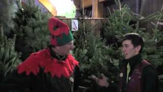 December Gardening Tips @ The Old Railway Line - Christmas Trees & General Advice