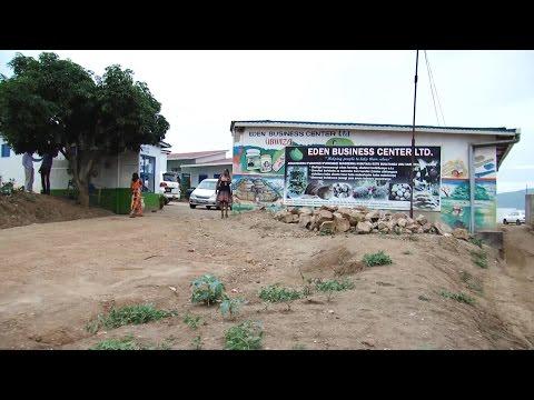 KUROILER CHICKEN REARING IN RWANDA