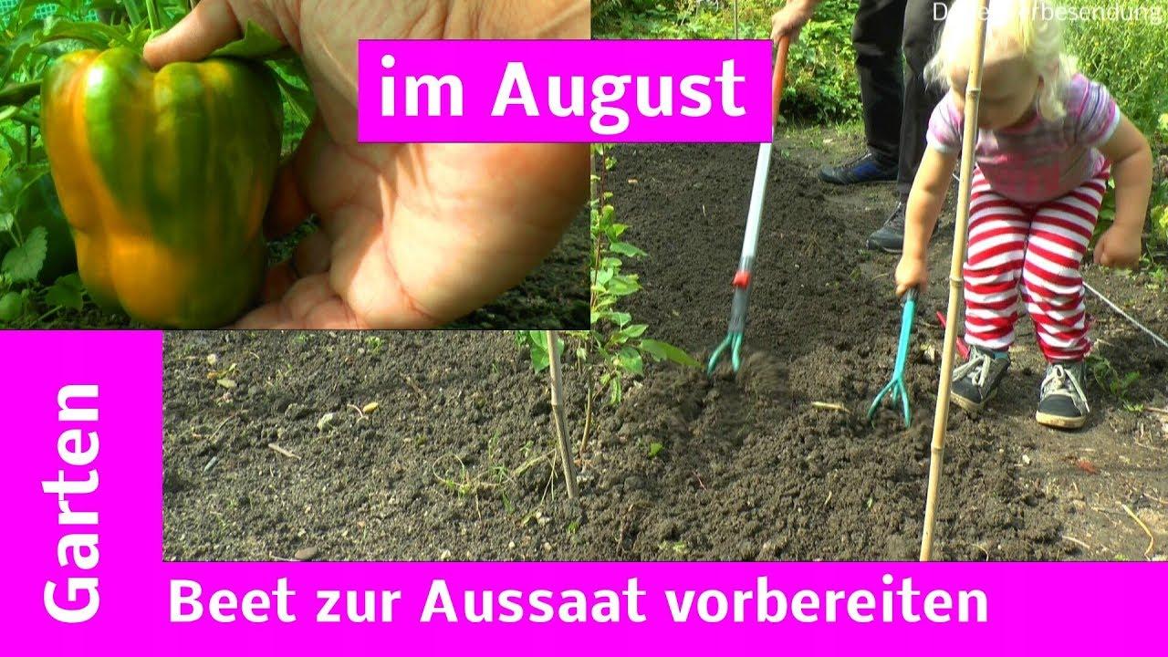 Garten Mitte August Radieschen Gemuse Beetvorbereitung Youtube