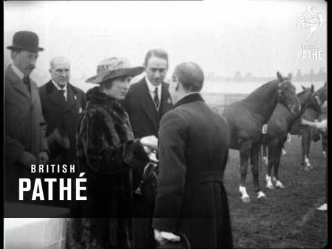 National Hackney Show (1923)