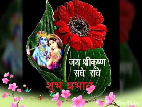 Good Morning Krishna Whatsapp Videos Youtube