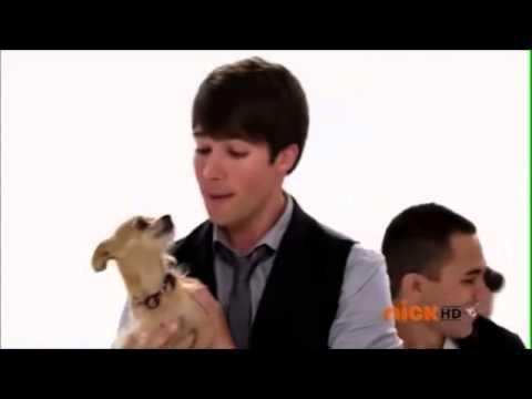 Dogs BTR