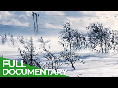 Russia's Icy Northern Sea Coast | Free Documentary Nature