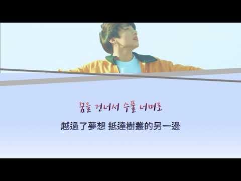 韓中字 Euphoria : Theme of LOVE YOURSELF 起 Wonder - Jungkook(BTS)