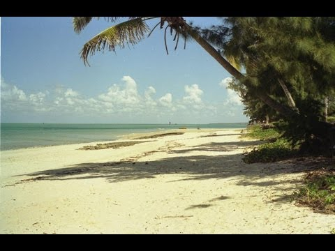 Mozambique. Travel guide.
