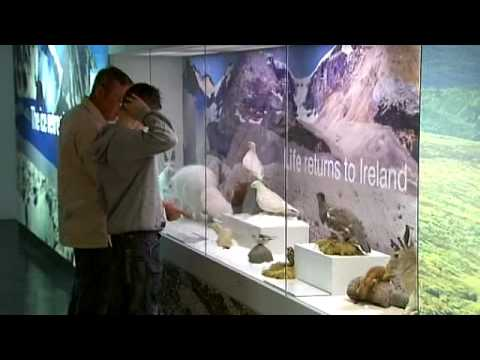 Reopening of Ulster Museum