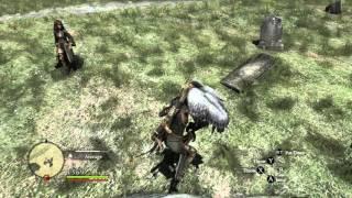 Dragon's Dogma: Dark Arisen Friendly Harpy :O