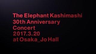 エレファントカシマシ LIVE DVD / Blu-ray「デビュー30周年記念コンサー...