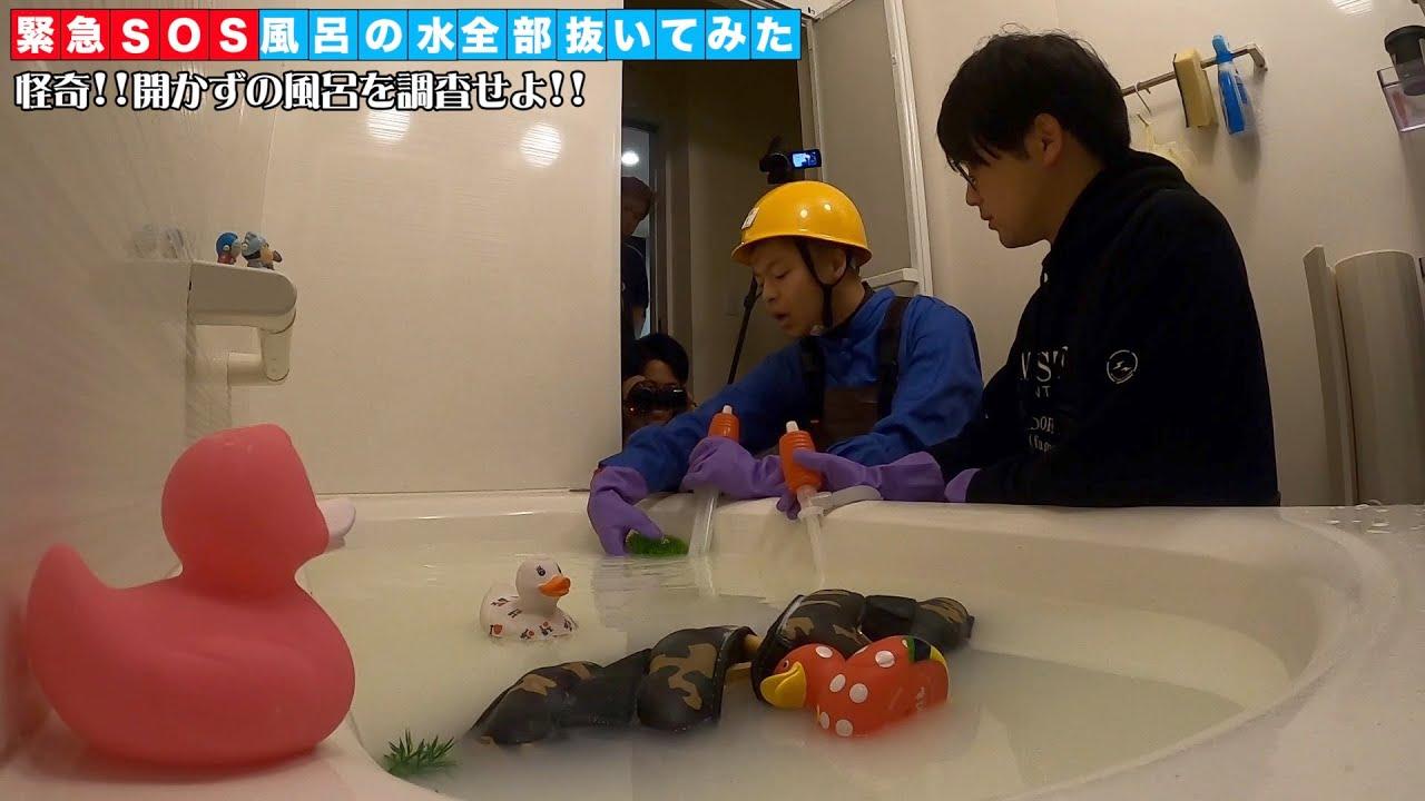 緊急SOS!風呂の水全部抜く大作戦【浴槽に謎の外来種が!】