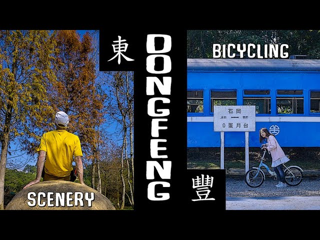 DONGFENG Bicycle Green Way (東豐自行車綠廊)