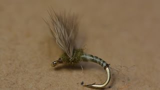 BWO Sipper Emerger
