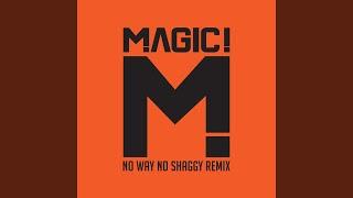 Play No Way No feat. Shaggy (Native Wayne Jobson And Barry O'hare Remix)