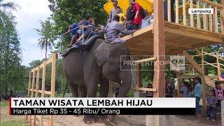 """Tunggang Gajah"" di Taman Wisata Lembah Hijau"