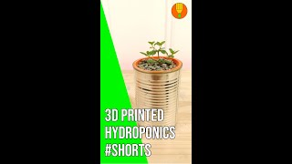For Plantlovers: 3D Printed Hydroponics in a Tin Can   Kratky Style #Shorts