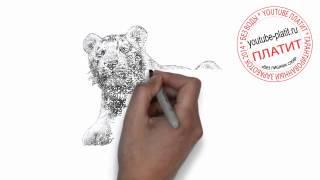 Как нарисовать карандашом таежного тигра за 34 секунды(Как нарисовать картинку поэтапно карандашом за короткий промежуток времени. Видео рассказывает о том,..., 2014-07-23T04:53:57.000Z)