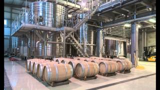 Castel Winery - 5 minutes Documentary