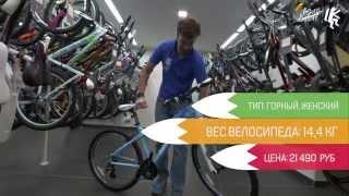 SMART LADY 80 (2015) Женский велосипед. ВЕЛОСАЙТ.РУ(Отличные велосипеды голандской марки SMART. Женский велосипед SMART LADY 80. Смотрите и комментируйте наш видеообзор., 2015-06-22T14:06:19.000Z)