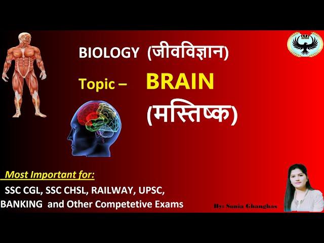 Brain (मस्तिष्क) -- Biology (जीव विज्ञान) for Competitive Exams#sukrajclasses