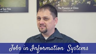 Lewis - Jobs in Information Systems