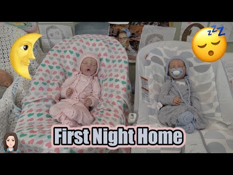 Reborn Baby Twins Raelynn & Ryan's First Night Home | Kelli Maple