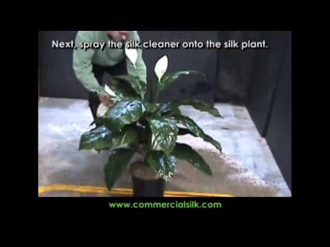How to Clean Silk Plants