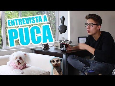 ENTREVISTA A PUCA ft. Rix / Juanpa Zurita