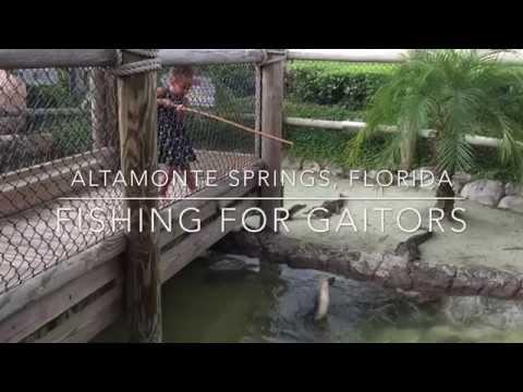 Fishing For Gators - Altamonte Springs, Florida (Congo River Golf)