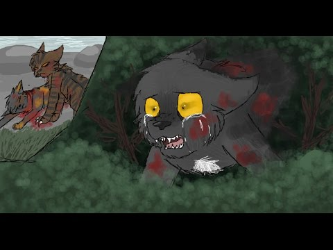 What If Ravenpaw Never Left ThunderClan? ...