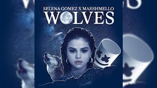 Selena Gomez X Marshmello Wolves Instrumental.mp3