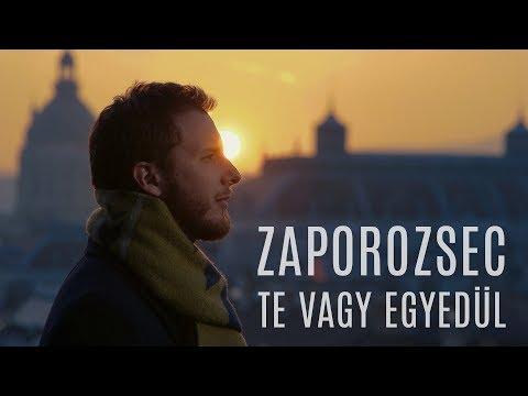 Zaporozsec - Te vagy egyedül (Official Music Video)
