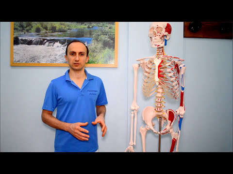 Frattura della vertebra lombare