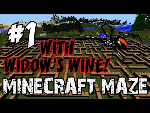 MINECRAFT ZOMBIE MAZE: Featuring WIDOW\'S WINE!!! [1] ☆ (CoD Custom ...