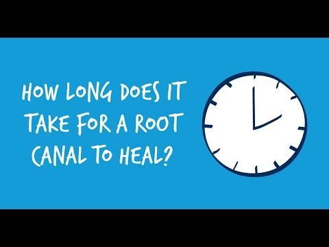 How Long Does It Take for a Root Canal to Heal?