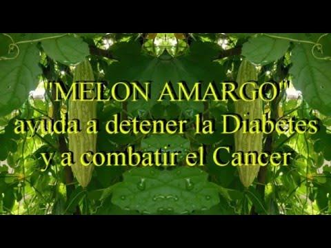 """MELON AMARGO"" ayuda a detener la Diabetes y a combatir el Cancer - Dra. Bertha Pareja Pareja - PERU"