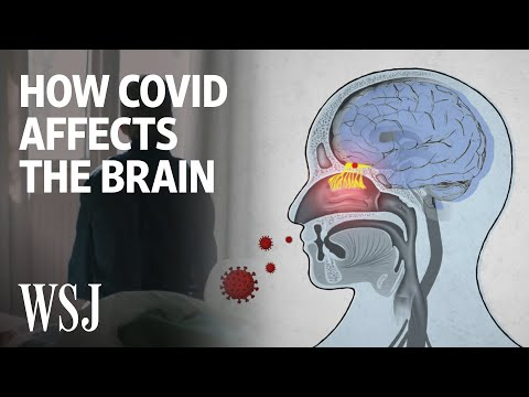 The Science Behind How the Coronavirus Affects the Brain | WSJ