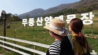 [AUDIO] 무등산 양떼목장 | 목장길따라 - 김세환