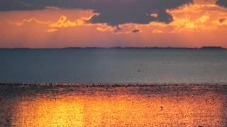 Wildlife and Sunset at Snettisham Beach
