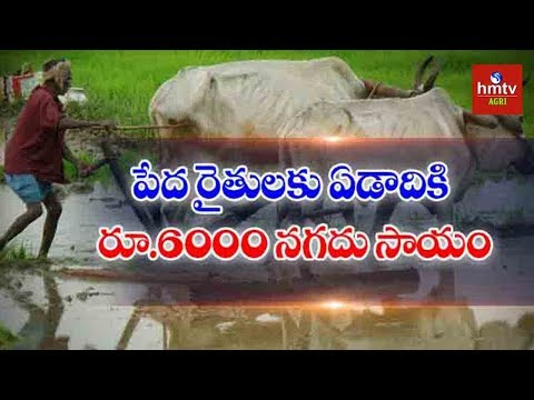RS 6,000 Direct Cash Transfer For Small Farmers | Union Budget 2019 | hmtv Agri