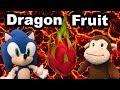 Tt Short The Dragon Fruit