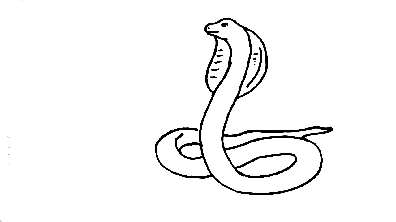 How to draw Snake- King Cobra- in easy steps for children ...