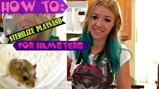 HOW TO: Sterilize Play Sand for Hamsters!! Thumbnail