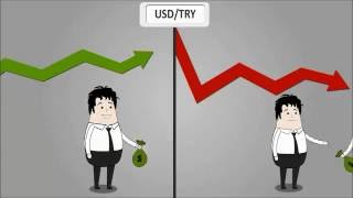Forex Nedir, Nasıl Yatırım Yapılır