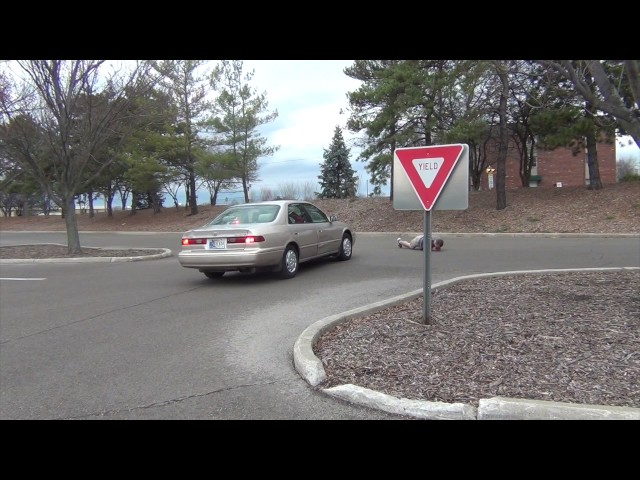 How Everybody Treats Yield Signs