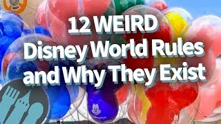12 Weird Disney World Rules, and Why They Exist!