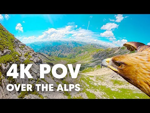 Through an Eagle's Eyes: Breathtaking 4K POV over the Alps